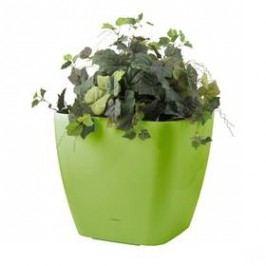 G21 samozavlažovací Cube maxi zelený 45cm zelený Doplňky na zahradu