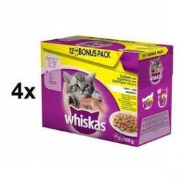 Whiskas JUNIOR drůbežívýběrv želé 4 x ( 12 x 100g )