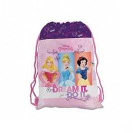 P + P Karton Disney Princess