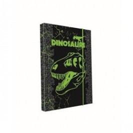 P + P Karton A4 Dino
