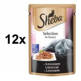 Sheba SELECTION in Sauce s Lososem 12 x 85 g
