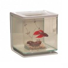 Hagen Betta plast Marina Kit Contemporary 2l plast Akvaristika