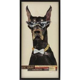 Obraz s rámem Art Cool Dog 121x61 cm