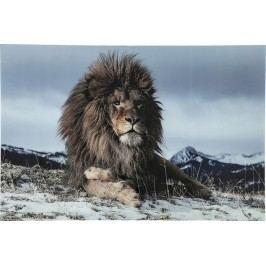 Obraz na skle Proud Lion 120x80cm