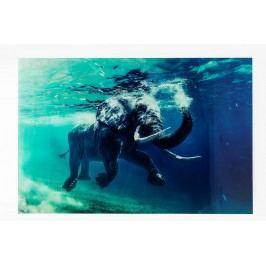 Obraz na skle Swimming Elephant 180x120 cm