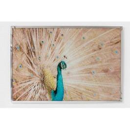 Nástěnná dekorace Peacock 114x78cm