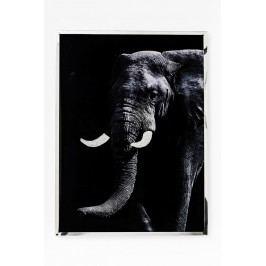 Nástěnná dekorace Elephant Face 73x97cm