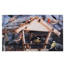 Rohožka Feeding Birds 46x76 cm