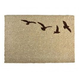 Rohožka Flying birds Light Brown 40x60 cm