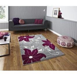 Koberec Verona Grey and Purple 80x150 cm