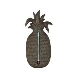 Venkovní teploměr Pineapple