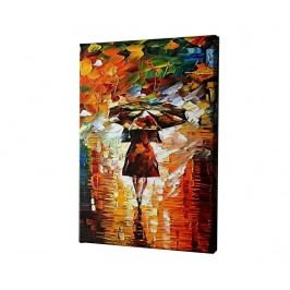 Obraz Rain Princess by Leonid Afremov 60x90 cm