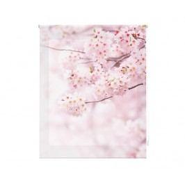Zatemňovací roleta Cherry Blossom 120x250 cm