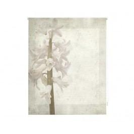 Zatemňovací roleta Hyacinth 180x180 cm