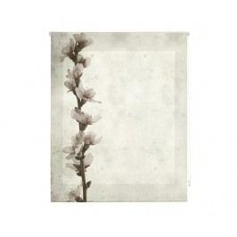 Zatemňovací roleta Growth 180x180 cm