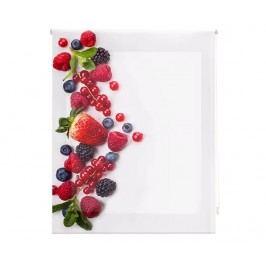 Zatemňovací roleta Berry Much 80x180 cm