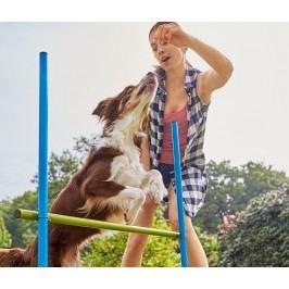 Sada překážek pro psy – pro začátečníky